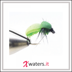 XWaters Chewing Gum Bettle Chartreuse